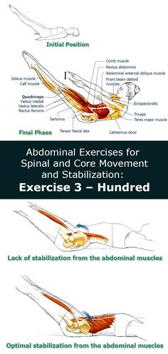 Abdominal Exercises for Spinal and Core Movement and Stabilization: Exercise 3 – Hundred - The Health Science Journal