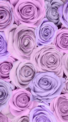 Purple Roses Wallpaper, Floral Wallpaper Iphone, Wallpaper Nature Flowers, Flower Background Wallpaper, Beautiful Flowers Wallpapers, Cute Wallpaper Backgrounds, Flower Backgrounds, Aesthetic Iphone Wallpaper, Pretty Wallpapers