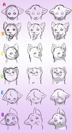 How-To-Draw Wolves Part 4 by ~DogWolf129 on deviantART