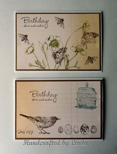 Natures Walk SU Stamp set