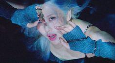 Crazy Cat Lady, Crazy Cats, Rose Park, Blackpink Photos, Jennie Blackpink, Park Chaeyoung, Female Singers, Arm Warmers, Like You