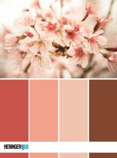Inspiarção para cores Foto por Winny Lessa www.winnylessa.com www.heringerdesign.com