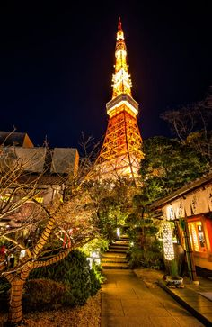 Tokyo Tower from Tofu-ya Ukai, Japan Tokyo City, Tokyo Japan, Places Around The World, Around The Worlds, Tokyo Ville, Beautiful World, Beautiful Places, Night Scenery, Japan Landscape