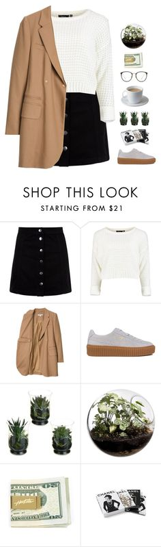 """""""Untitled #1001"""" by theonlynewgirl ❤ liked on Polyvore featuring Carven, Bodum, Puma, Home Essentials, Chanel and Linda Farrow"""