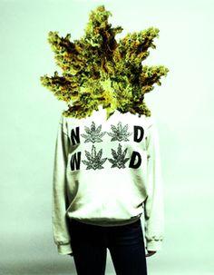 weed head