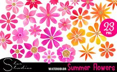 Summer Flowers pack by Star Studios on Creative Market