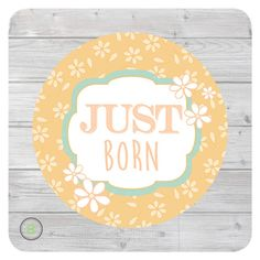 Newborn Monthly Baby Sticker for Girl Just Born by BabyLookback