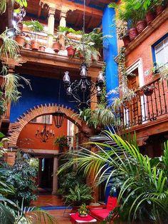 WILD WITH PLANTS Hotel Rincón de Josefa in Pátzcuaro, Michoacán, México