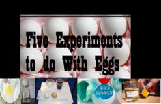 Five egg experiments to try with your kiddos! By One Less Headache.