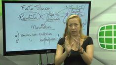 Direito Penal - Teoria do Crime - Professora Roberta Cordeiro