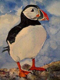 'Puffin' Fine Art Watercolor by Louise Grant - An original watercolor painting of a puffin. Beautiful colors and textures Louise!