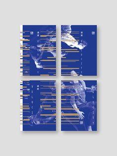 Horse Dance Theatre- Velocity by ANGLE visual integration, via Behance