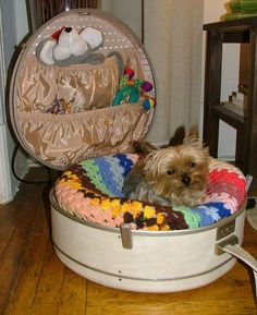awesome ideas for dog beds nmschwei