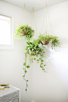 DIY Hanging Planters | DIY ideas, spring craft ideas, first day of spring ideas and more from /cydconverse/
