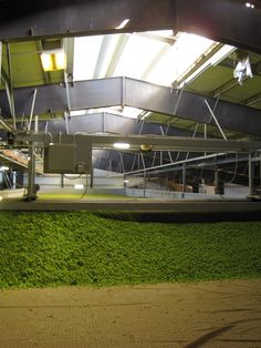 Hops Drying - Yakima, WA Sept 2010