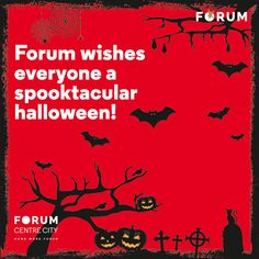 When black cats prowl & pumpkins gleam; May luck be yours on #Halloween! #nammamysuru #MaharajaofMalls #Openingsoon
