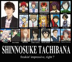 voice actor Shinnosuke Tachibana characters