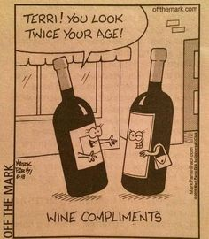 Brandy and Wine. You've Come To The Right Place To Learn About Wine. There are so many occasions that call for a bottle of the best wine. Learning how to serve, taste or drink wine can help you make your next party or get-to Wine Jokes, Wine Meme, Wine Funnies, Wine Signs, Wine Wednesday, Wine Parties, Wine And Beer, Wine And Spirits, Wine Making