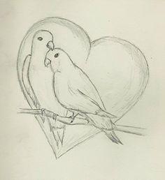 Love birds dove branch heart sketch