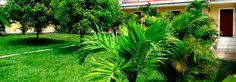 foto de jardin en www.hotellarboleda.com