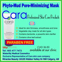 Clay Masks, Active Ingredient, Skin Care, Products, Skin Treatments, Skincare, Asian Skincare, Beauty Products