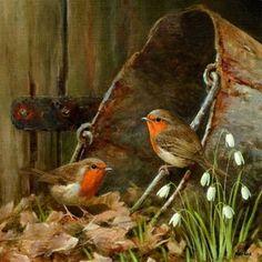 Birdie Buddies wonderful artwork of 2 little robins