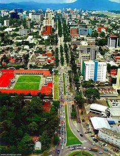 Avenida reforma capital de guatemala