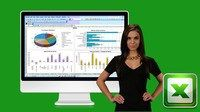 Interactive Dashboards with Excel Pivot Tables & PivotCharts Coupon|$12 40% Off #coupon