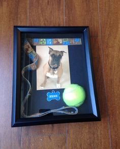 Dog Remembrance Shadow Box for a deceased pet.