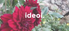 PERUSPIPON KAAVA JA OMPELUOHJEET - Ideoiblogi Beanie, Sewing, Womens Fashion, Plants, Diy, Farmhouse Rugs, Beanies, Hat, Dressmaking