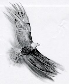 Image result for soaring falcon tattoo More