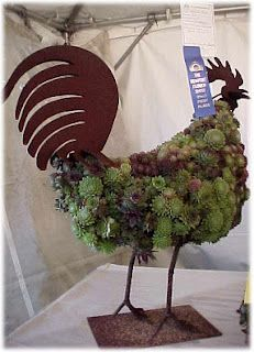 Hens and Chicks...get it?