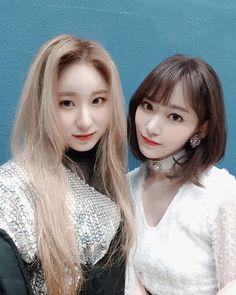 咲良&チェヨン Kpop Girl Groups, Kpop Girls, Sakura Miyawaki, Japanese Girl Group, Japan Girl, 3 In One, Happy Moments, Videos Funny, Pop Music