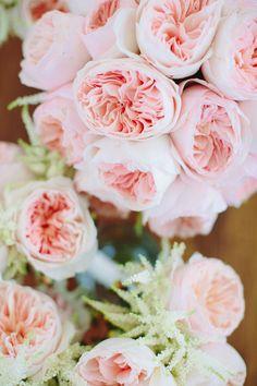 Garden rose loveliness | Photography: Julia Wade - julia-wade.com   Read More: http://www.stylemepretty.com/destination-weddings/2014/06/04/navy-pink-block-island-wedding/
