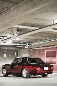 Alfa Romeo car - fine picture