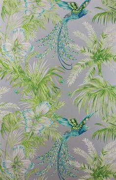 """""""Bird of Paradise"""" Osborne & Little: W6655-04"""
