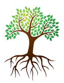 Mohli by sa to naučiť všade, nech zbytočne neplytváme.  http://www.tatramat.com/blog/ako-setrit-energiu-vo-velkych-objektoch-a-prevadzkach