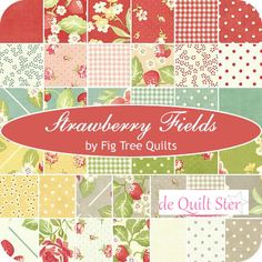 Candy Moda 'Strawberry Fields Revisited' by Fig Tree Company