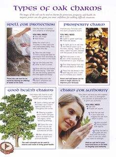 Book of Shadows:  #BOS Types of Oak Charms page.