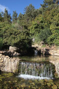 Mountain stream - Hemdat Yamim, Shefer, Israel