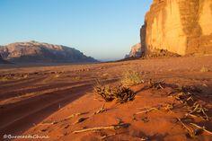 Let´s get lost in Wadi Rum! Jordania