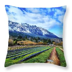 Farmlands Throw Pillow featuring the photograph Patagonian Farmlands by Eduardo Accorinti. Amazing colorful landscape or green farmlands, snowy mountains and blue sky with clouds. For your bedroom, living room or business decor. Beautiful gift for landscape lovers. Worldwide shipping, 30 days money back guarantee. Click on the image to see your choices for your home decoration! #GiftIdeas #HomeDecor #Landscape Funny Pillows, Throw Pillows, Snowy Mountains, Sky And Clouds, The World's Greatest, Great Artists, Choices, Photograph, Lovers
