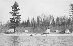 Chippewa Indian camp on the Rainy River. Photograph Collection, 1915 Collections Online Minnesota Historical Society Location No. E97.31 r129 Negative No. 547