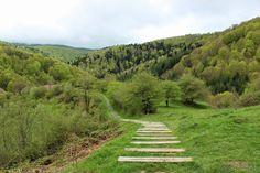 """""""Unas de las escaleras más bonitas que hemos visto en nuestra vida..."""" (El Txoko de Lonifasiko en Google+) Selva del Irati, #Navarra"""