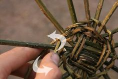 Weaving a basic basket. Tells how to prepare brambles for weaving. Paper Basket Weaving, Types Of Weaving, Rope Basket, Hair Accessories, Bramble, Willow Tree, Loom, Baskets, Crafts