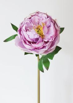 Lovely lavender artificial peony natural touch flowers have that fresh-from-the-garden look. Perfect for your DIY wedding bouquets or corsages. Lavender Tall x Bloom Real Touch Browse All Real Touch Flowers Faux Flowers, Dried Flowers, Silk Flowers, Silk Peonies, Peony, Ranunculus, Artificial Peonies, Diy Wedding Bouquet, Purple Wedding Flowers