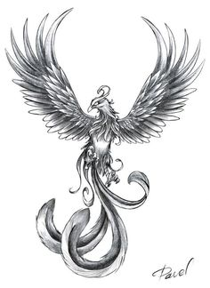 Phoenix Tattoo-inspiration. This Is Beautiful!! I Love The Tail!! I Want Something Like This.