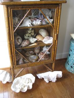 Everyone NEEDS a curiosity cabinet to set the Resort Chic vibe su casa!