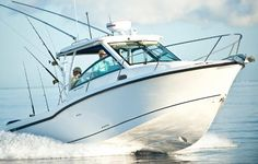 Find the big fish in this 2015 Boston Whaler 285 Conquest.