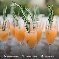 """Fresh cocktails and more wedding details on our site today! See what's new at CaratsandCake.com/weddings -- Photo by @lesliehollingsworthphoto -- Catering by Townsend Catering -- Planned by @ChristinaGillon -- @Rosemary_BeachFL -- #CandCJustBloomed"" Photo taken by @caratsandcake on Instagram, pinned via the InstaPin iOS App! http://www.instapinapp.com (05/01/2015)"